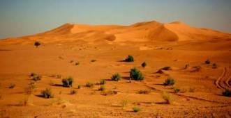 Claro que funcionan en el desierto. Si no,¡ ¿qué gracia tendrían?!